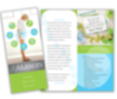 Alison Wellness Clinic brochue