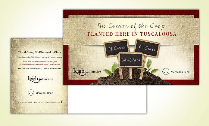 Planted DM.jpg