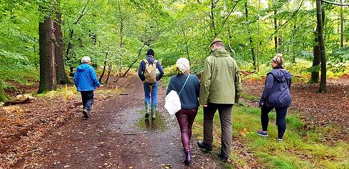Tree Energy Walks