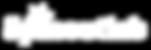 Spinoutlab_Logo_white.png