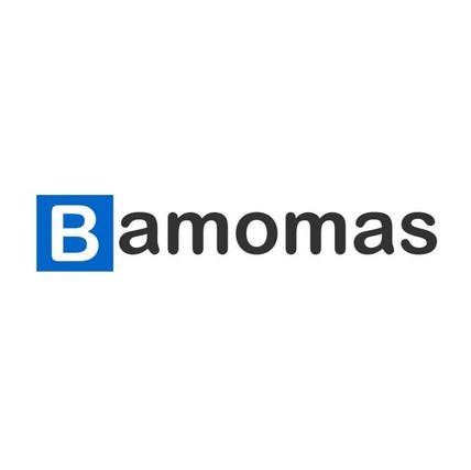 Bamomas Battery Intelligence.jfif