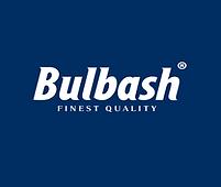 Logo_Bulbash_blau_deustch.png