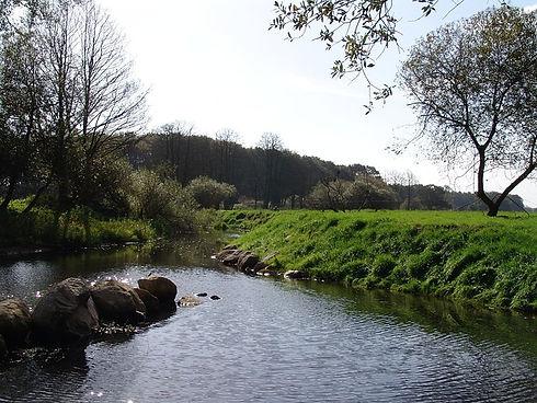 Flusslauf.jpg