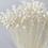 Thumbnail: Floral Buttons