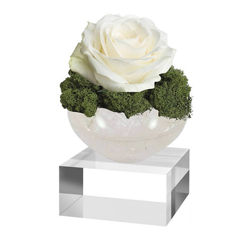 Selenite Crystal Bowl