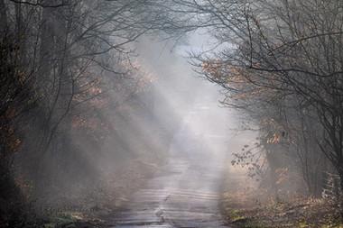 Road through the Mist