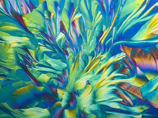 Crystal Microscopy