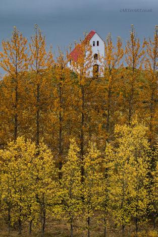Autumn Sentinels