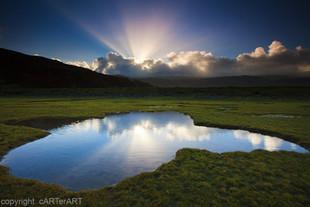 Arthog Marsh Dawn