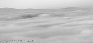 Misty Teme