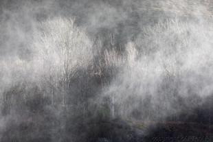 Watery Mist