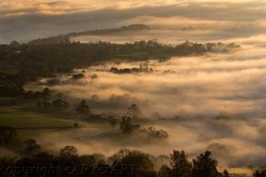 Creeping Mists