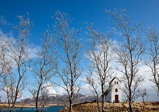 Trees and Church on Lake Úlfljótsvatn