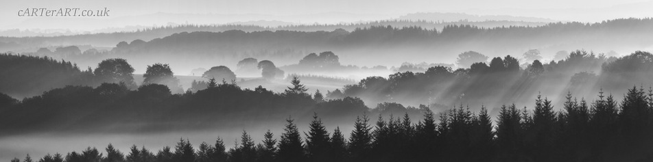 Wyre Forest Panorama