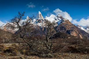 Mighty Fitz Roy