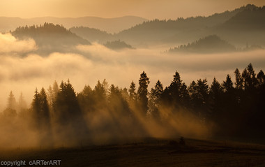 Dawn Slovakia