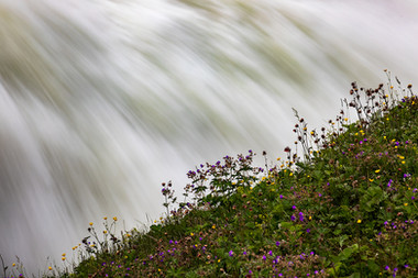 Watery Backdrop