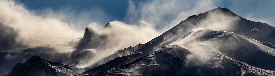 Mountain Mists