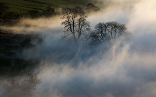 Swirling Mists