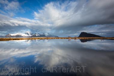Reflected Symmetry