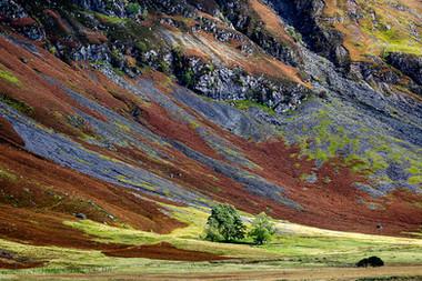 Scottish Hues