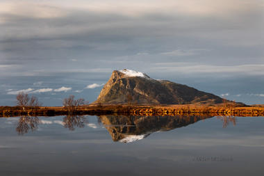 Hoven Reflections