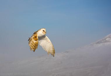 Flight over Clee