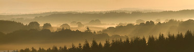 Morning Mist over Wyre Forest
