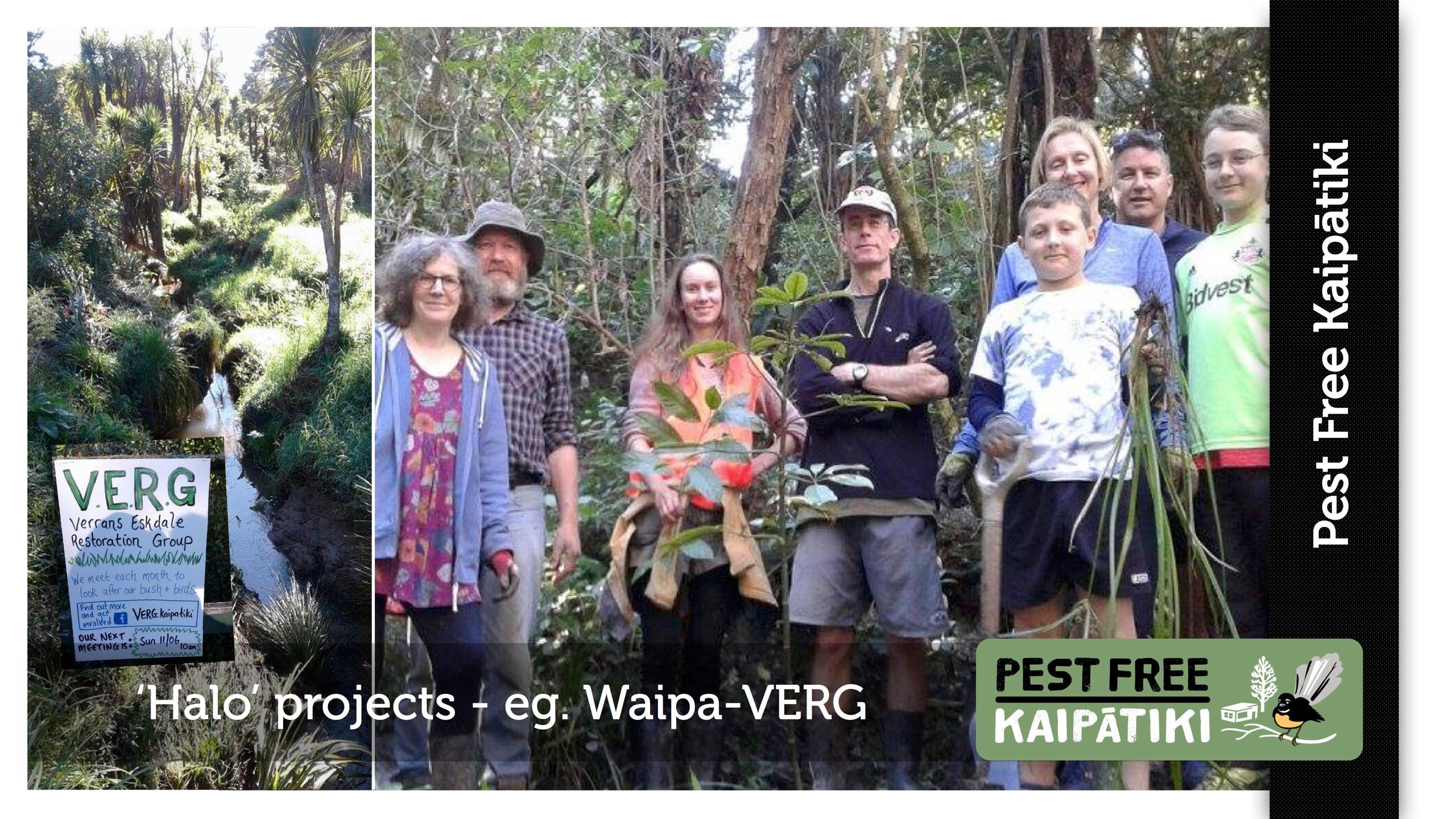 Pest Free Kaipatiki-Pestival-slide15