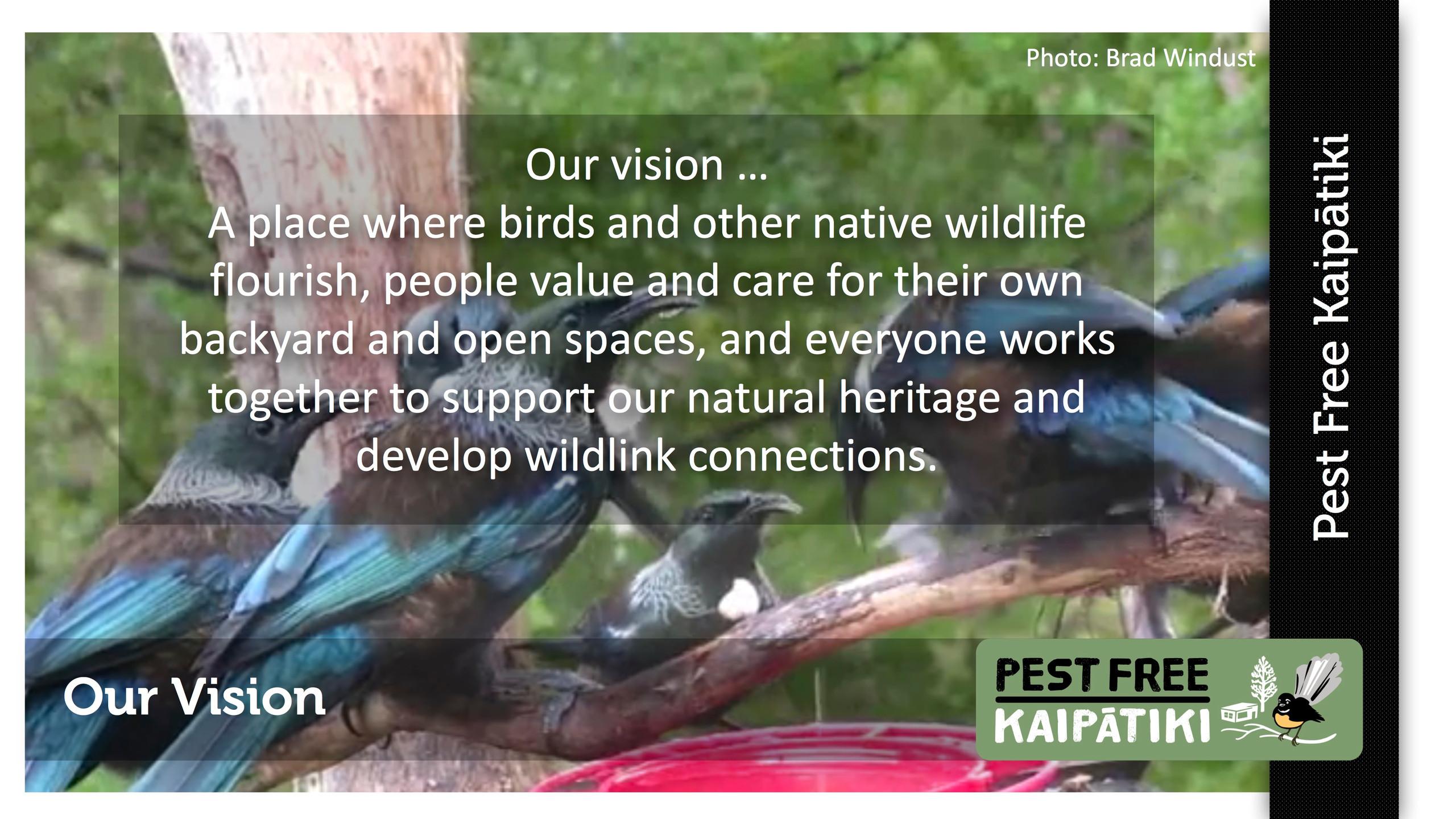 Pest Free Kaipatiki-Pestival-slide4