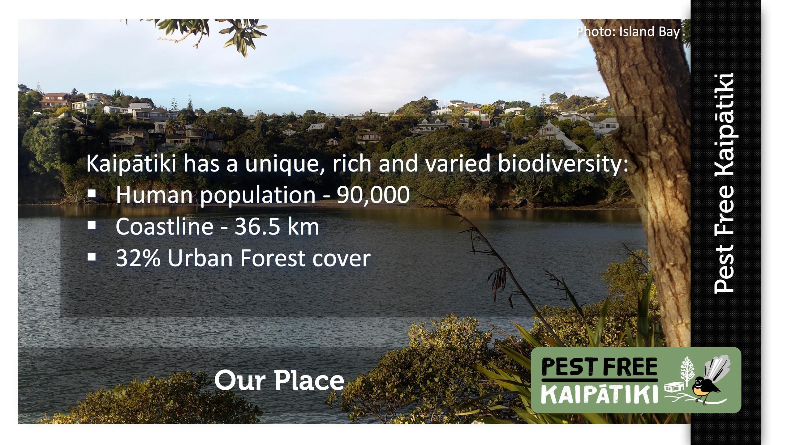 Pest Free Kaipatiki-Pestival-slide7