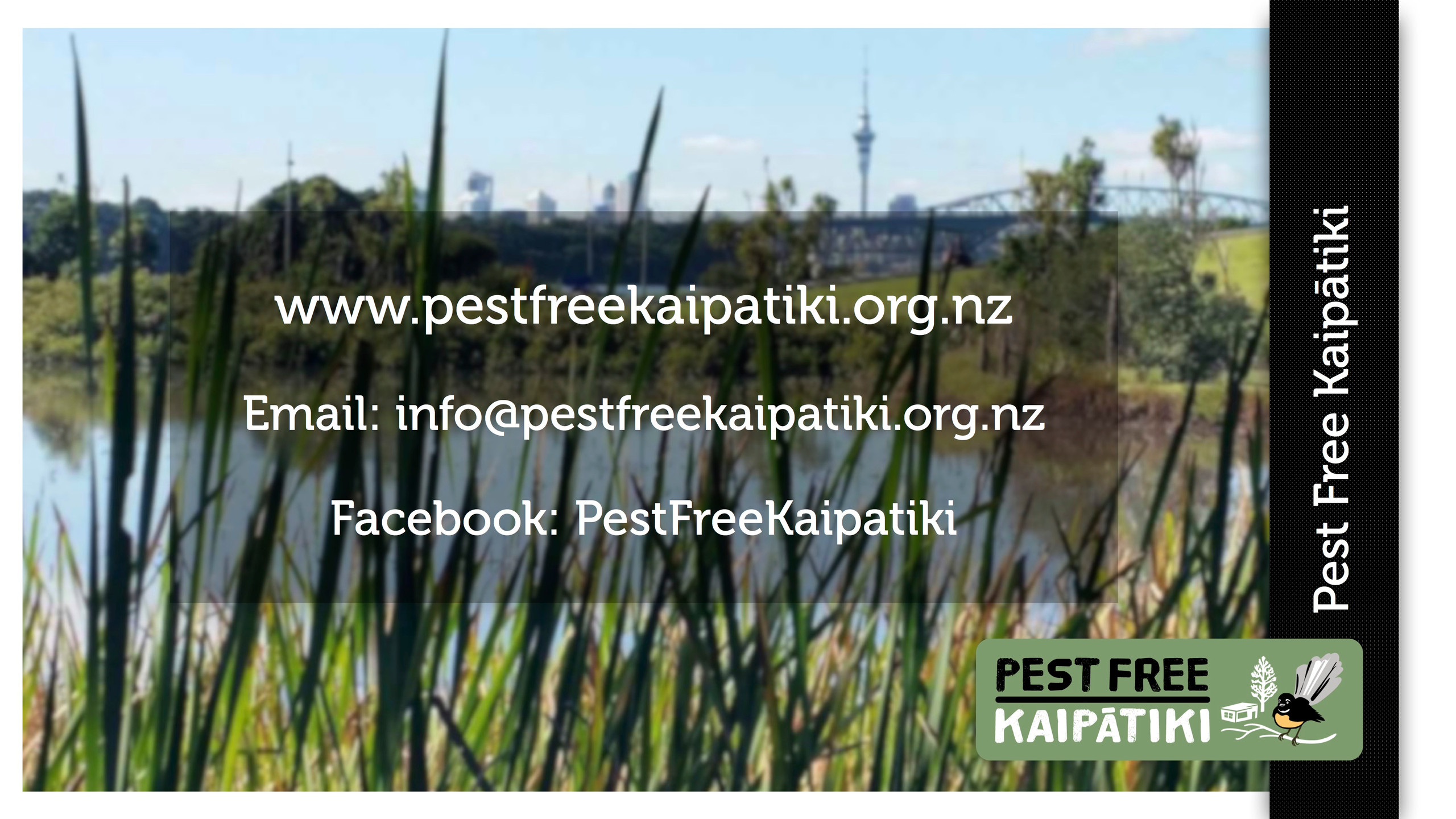 Pest Free Kaipatiki-Pestival-slide18