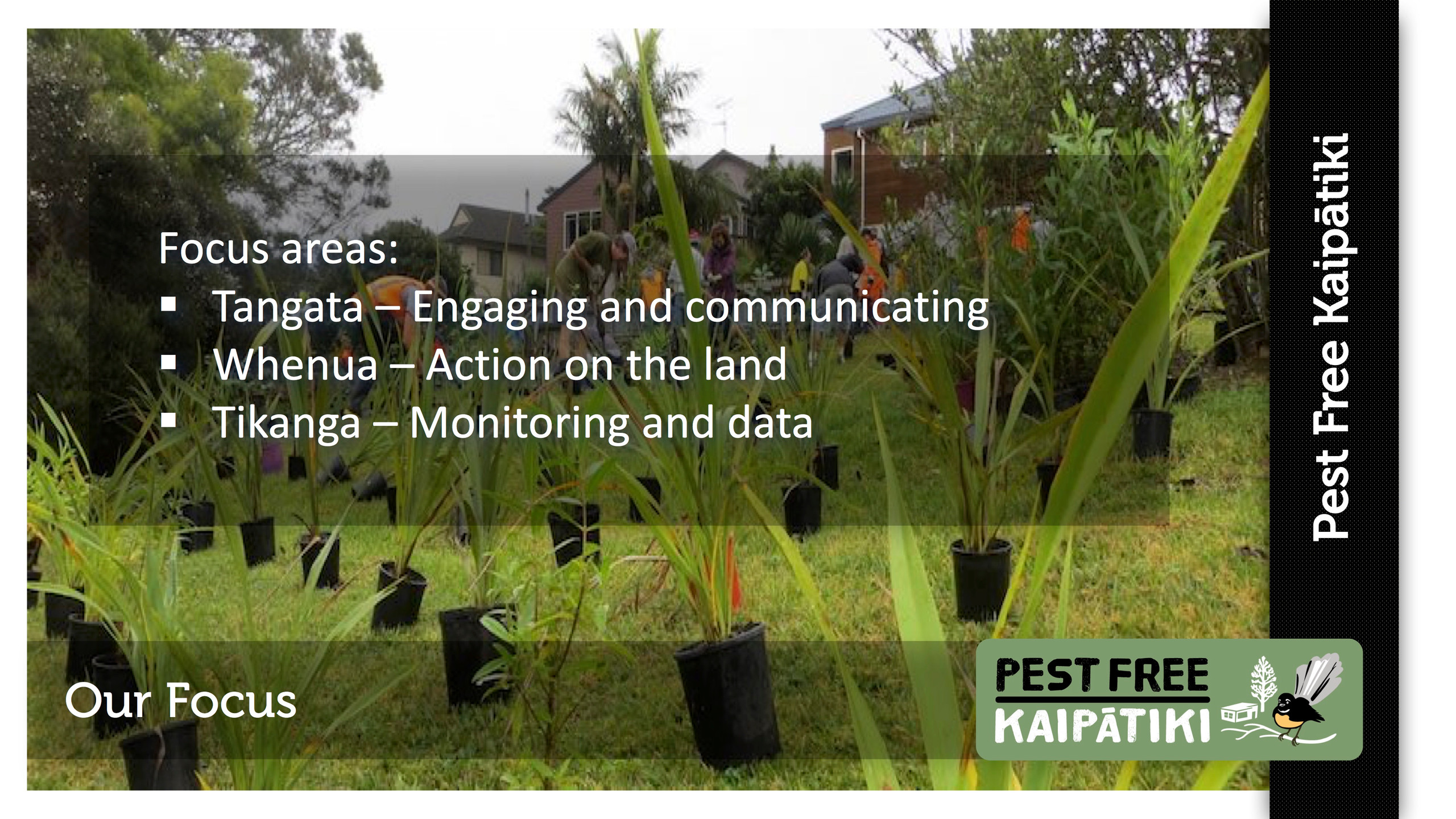 Pest Free Kaipatiki-Pestival-slide9