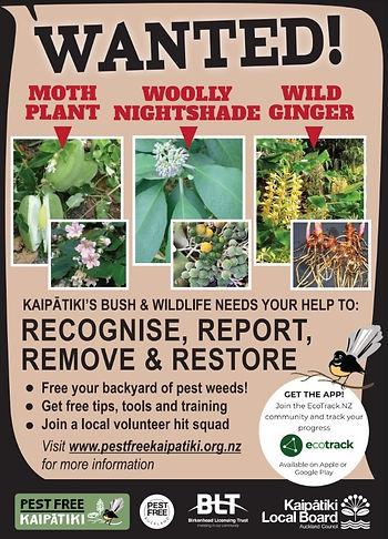 PFK Pest Plant Campaign 2019 v5 copy.jpg