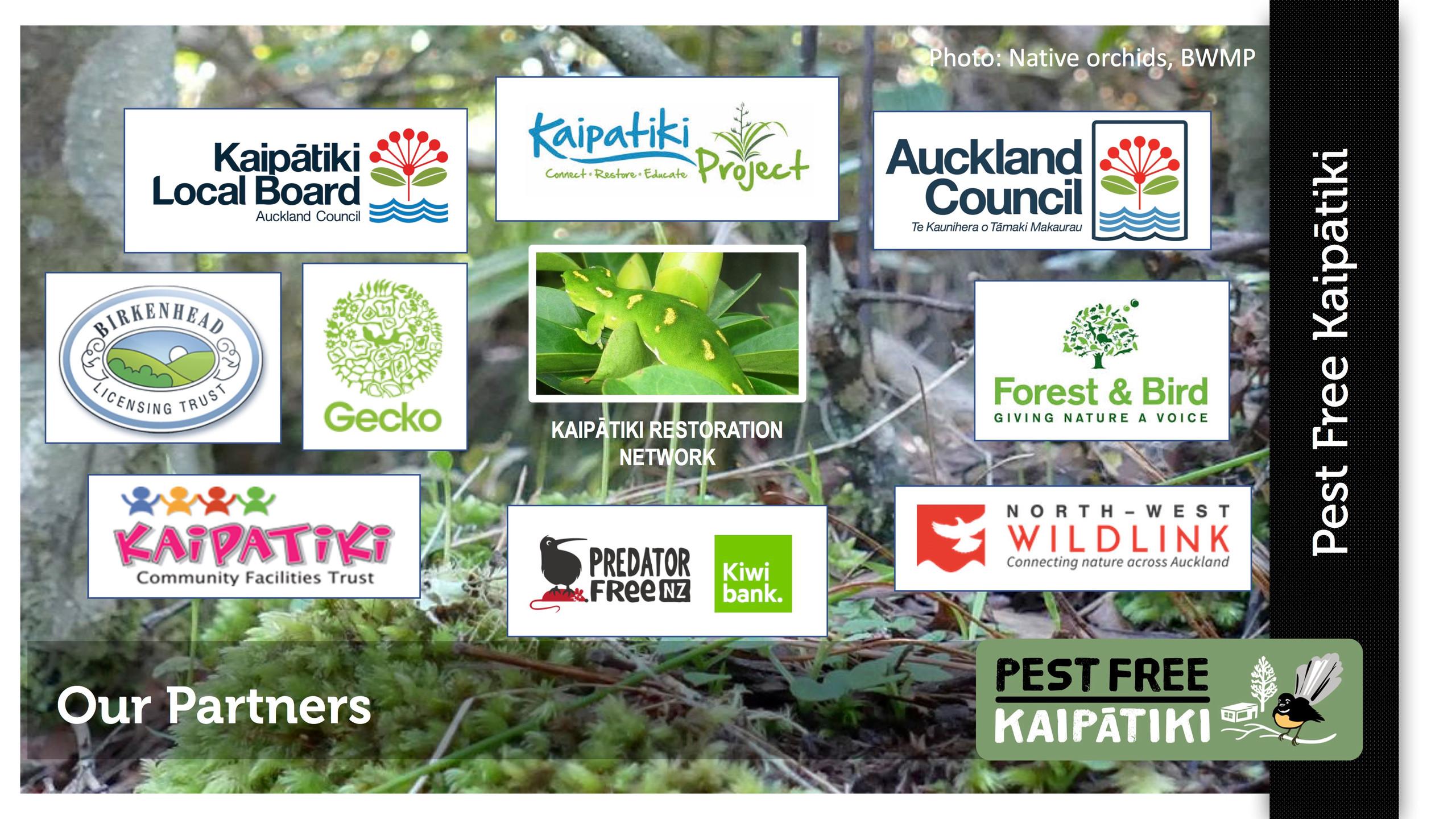 Pest Free Kaipatiki-Pestival-slide1