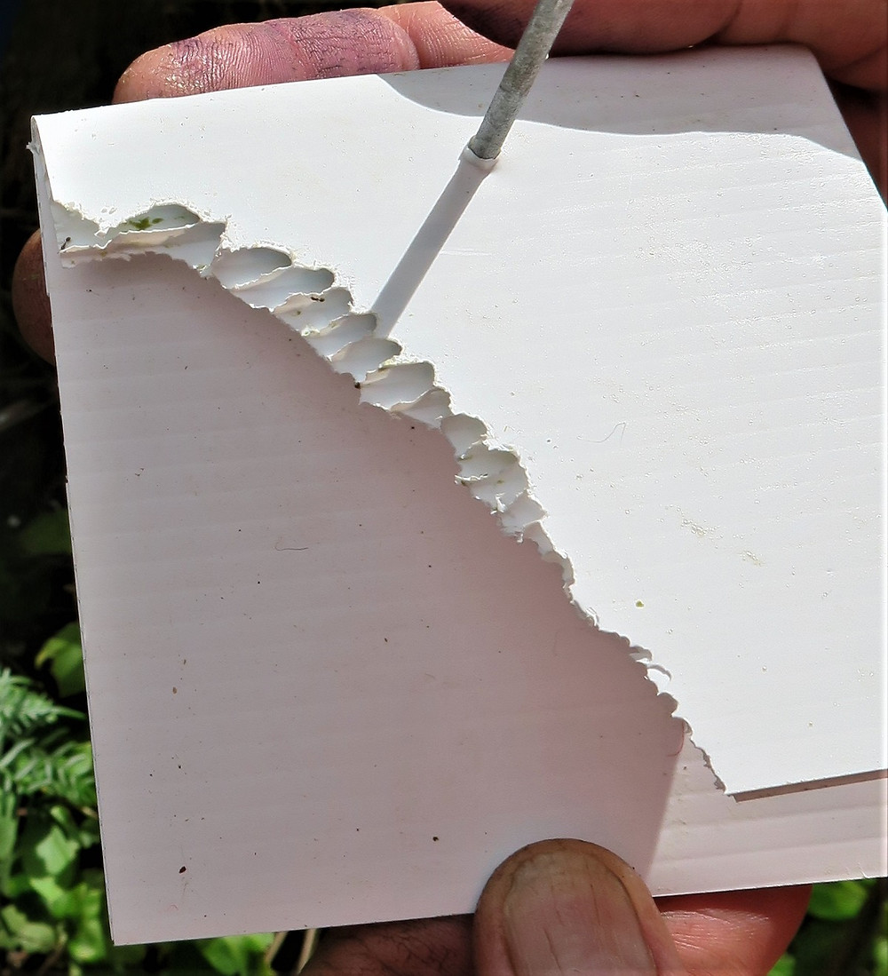 Chew card with bite marks