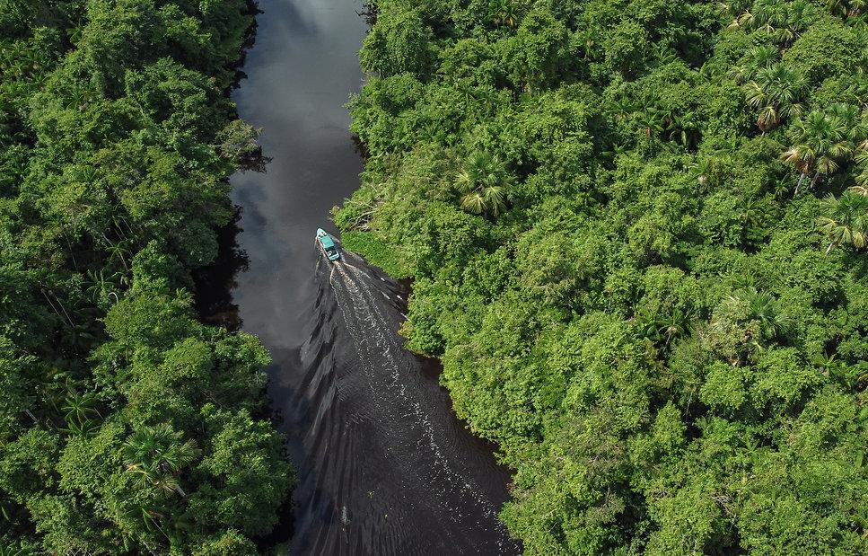 Paquetes de Viaje Delta del Orinoco