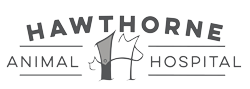 web-logo.png