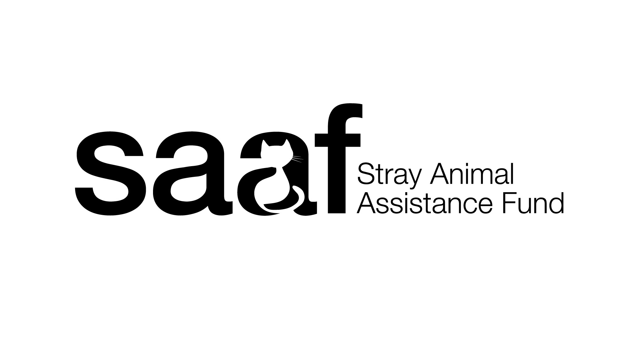 SAAF Logo and Identity