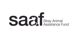 SAAF Logo and Identity