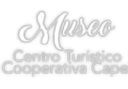 museo-800x556.png