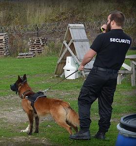 Maitre chien agent de sécurité à Paris