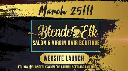 BlondeElk_WebsiteLaunchPromoBlueBox.mp4