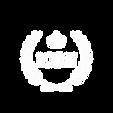 logo%20metallic_edited.png