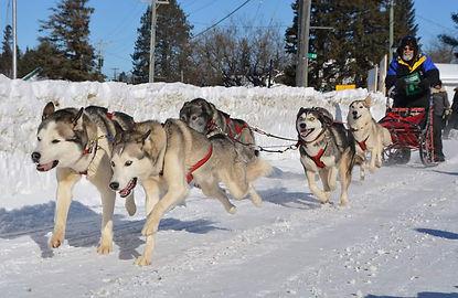 Ron Gagne Kearney 1 Dog Sled Race KP Pho