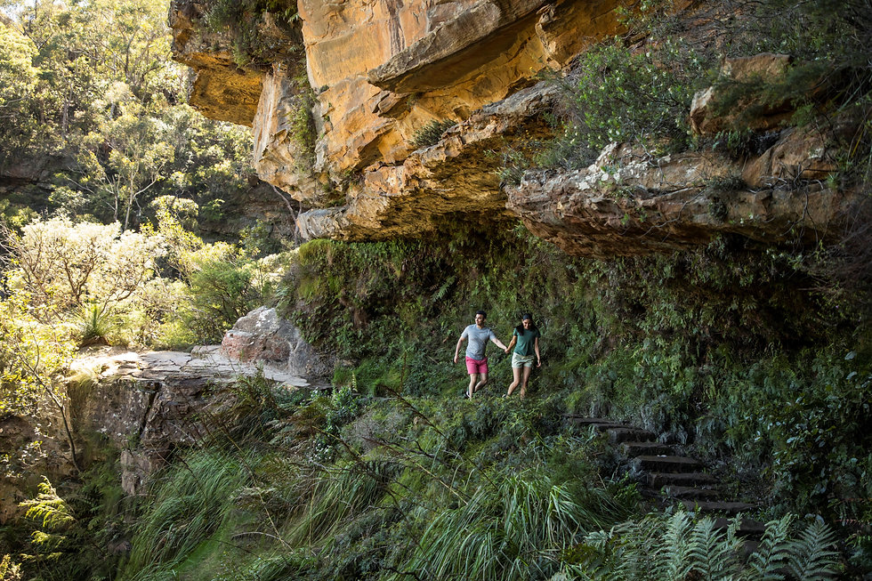 Blue Mountains - Wentworth Falls Track,