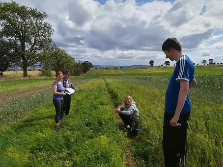 Field work in Scotland 2018