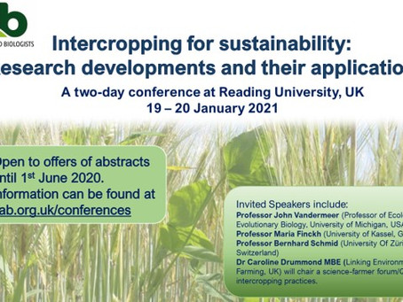 Intercropping for Sustainability Conference: open for abstracts