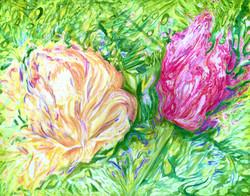Tulip Distortion SOLD