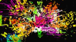 Flower Explosion Orange